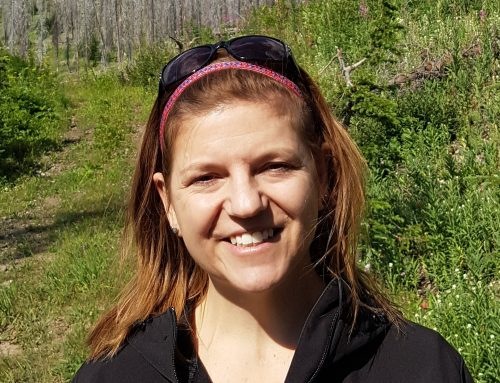 Monica Emelko interviewed by Capital Current on water quality impacted by wildfires